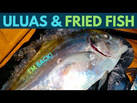 Spearfishing Hawaii: Uluas And Fried Fish! Catch And Cook Reef Fish! Ep.7