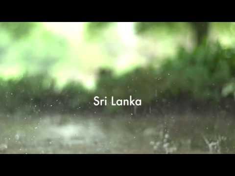 Sri-Lankan Civil War Overview