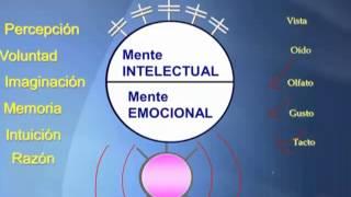 Visualizacion Cuantica - El poder de la Mente Subconsciente - Ley de Atraccion