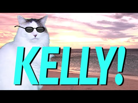 Happy Birthday Kelly Epic Cat Happy Birthday Song Youtube