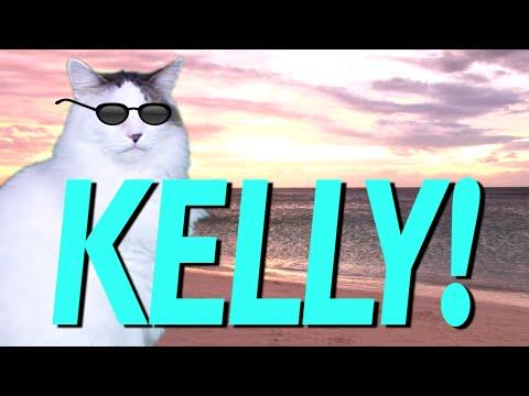 Happy Birthday Kelly Epic Cat Happy Birthday Song Youtube