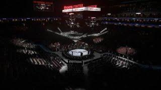 EA Sports UFC 3 Vladut gameplay fight #10