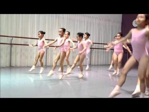 Ainsley RAD Ballet Grade 1 - Spring Points And Petits Jetés (10)