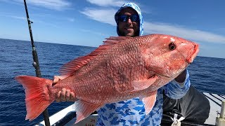 How To Catch Big Red Snapper Like A PRO