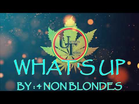 What's Up - 4 Non Blondes | Official Karaoke Video