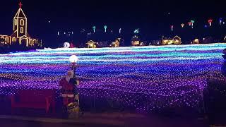 허브아일랜드 빛 축제