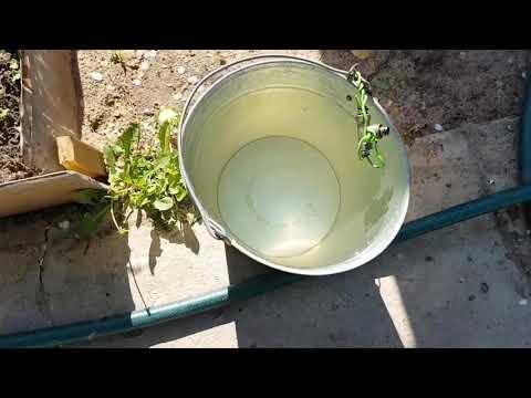 Снова о колодце,снова чистая вода,колодец своими руками