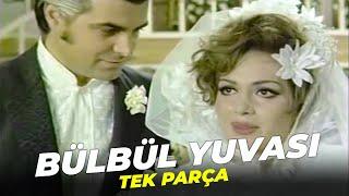 Bülbül Yuvası | Türkan Şoray Murat Soydan Eski Türk Filmi Full İzle