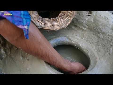 National Fishing - Catfishes & Mud fishing Use Bamboo fishing trap & Clay pot by A Fisher man