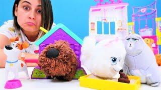 Çocuk oyun videosu. Evcil hayvanların otelinde hayvanlarla tanışalım!
