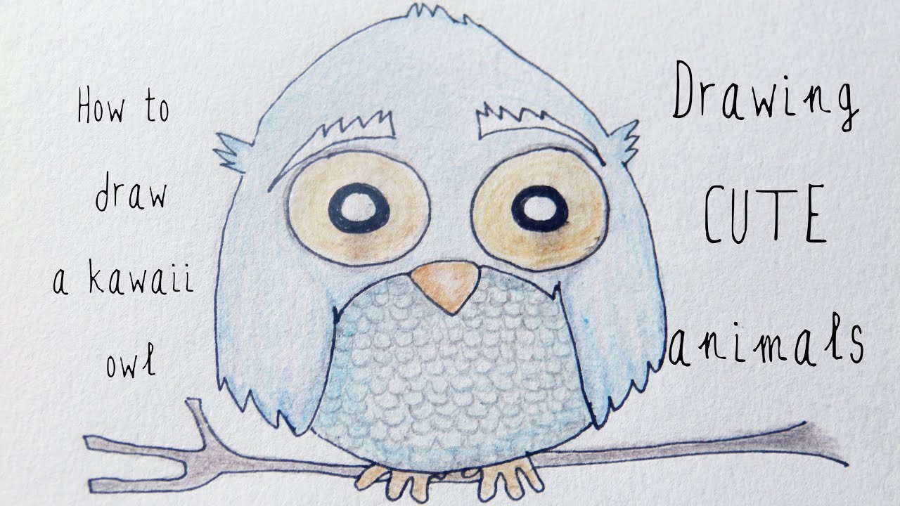 How To Draw A Kawaii Owl Drawing Cute Animals Youtube