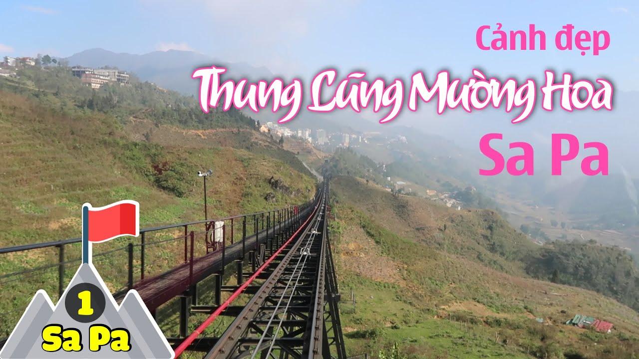 [Full HD] Thung Lũng Mường Hoa Tuyệt Đẹp Tại Thị Trấn Sa Pa | Tố đây!