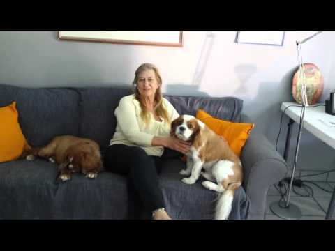 Trusted House Sitters video - MJ