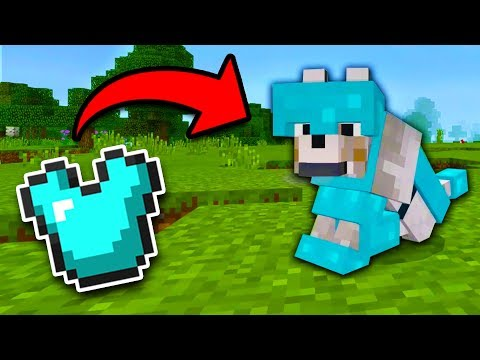 How to get WOLF ARMOR in Minecraft Tutorial! (Pocket Edition, Xbox)