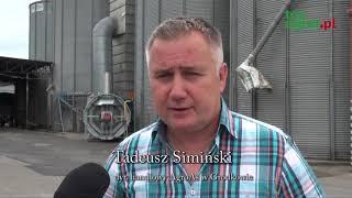 Opolskie: Żniwa rzepaku rozpoczęte, jednak plony są kiepskie