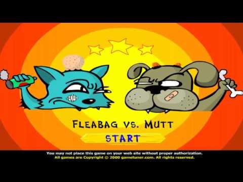 Funny, Cat Vs Dog Game!!