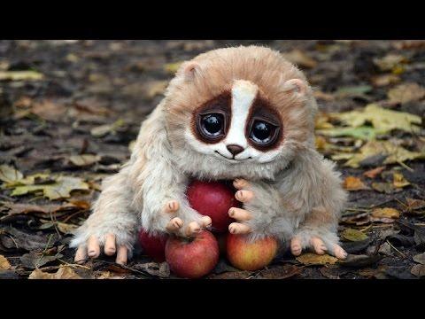 видео животных красивые и смешные