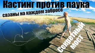 Casting network American vs Spider EKLMN Common carp on casting network Who will catch more carp