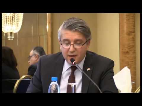 East Mediterranean Gas Prospects: Production and Markets Panel II (1)