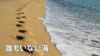 詞・山口洋子さん 曲・内藤法美さん ボーカロイド・Lily JASRAC コード ...