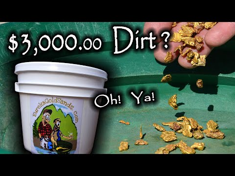 $3200.00 Bucket Of Dirt?  Gold Nuggets!  Oh Ya!