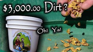 $3200.00 Bucket of Dirt?  Nugget Bucket Gold Paydirt Review.
