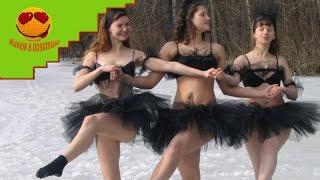 Танец маленьких лебедей - Танцуют все!