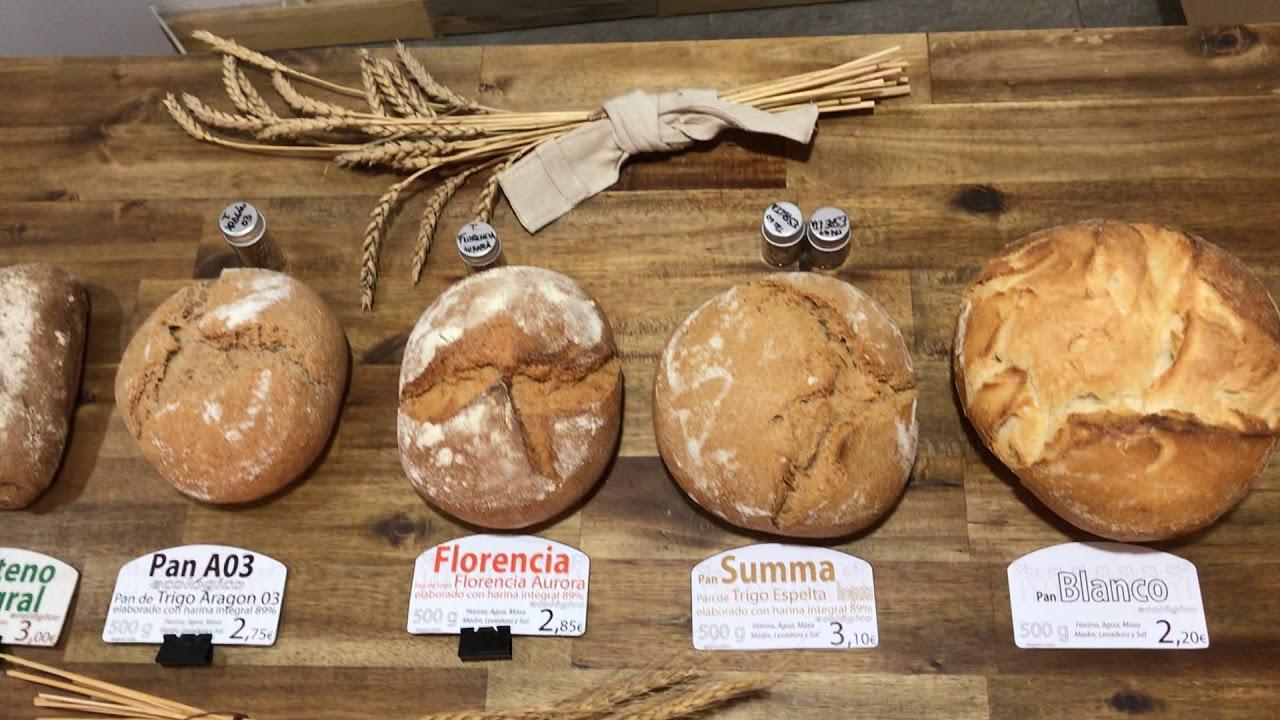 Tipos de pan Ecomonegros