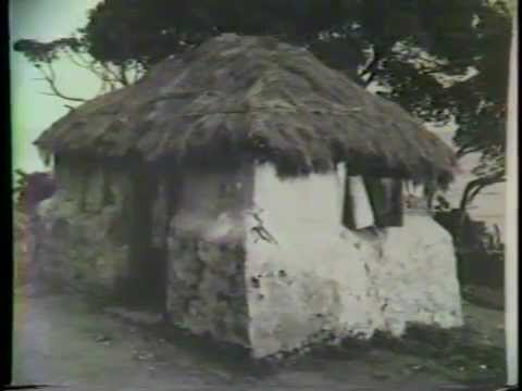 West Indian Cottage  Vernacular Architecture 1