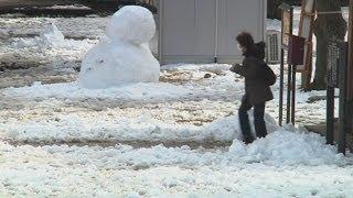 Japan snowstorm worst in decades
