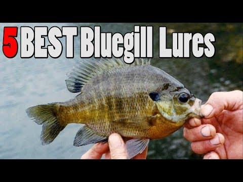 TOP 5 Bluegill Sunfish Lures