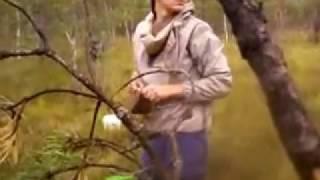 Убийство в лесу и как защетиться .
