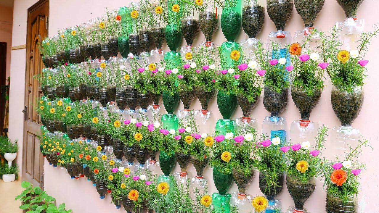 Amazing Vertical Garden Using Plastic Bottles Portulaca Moss Rose Garden On Wall Youtube