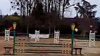 Segoo sur Jenny 1ere club 2 (90, 1 metre) Haras De La Chechiniere à Soligny La Trappe