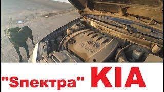 Авто за 90 тыс. KIA Спектра, брать или не брать?