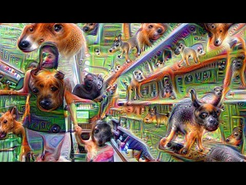 This is what happens when you feed a video through Google Deep Dream