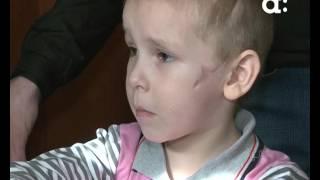 Родители ребенка, на которого напала собака, пытаются привлечь к ответственности ее владельца
