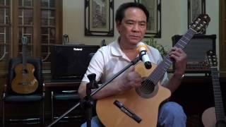 Guitar đệm hát TÌNH CHO KHÔNG BIẾU KHÔNG  Bác Nhâm