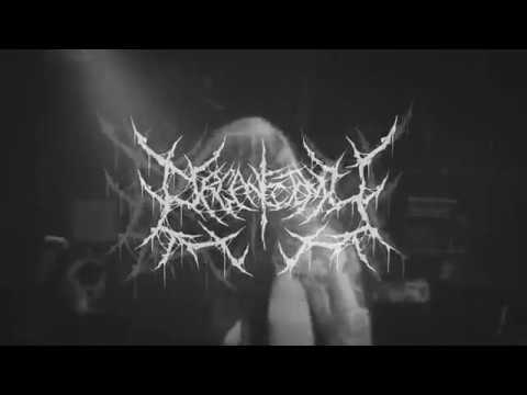 Organectomy - Terror Form (OFFICIAL VIDEO)