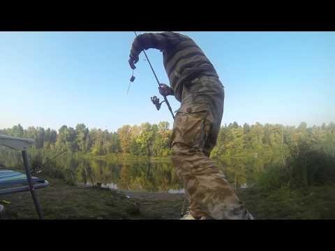 ловля карпа и толстолобика