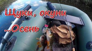 Рыбалка на спиннинг. Щуки, окуни ... осень(Ранняя осень, самое удачное время для ловли щуки и окуней спиннингом, проголодавшаяся за жаркие летние..., 2016-09-04T16:47:21.000Z)