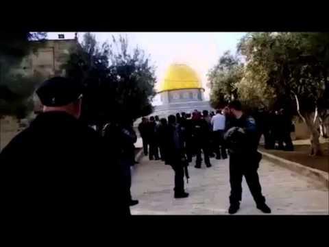 Joint List MK Basel Ghattas ascends Temple Mount despite Netanyahu's ban