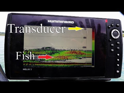 How To FIND Crappie (What Is My Fish Finder Showing?)