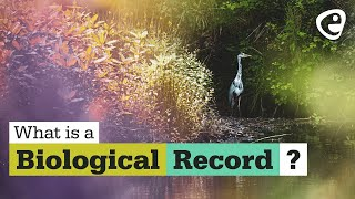 What is a Biological Record? (1 of 3)