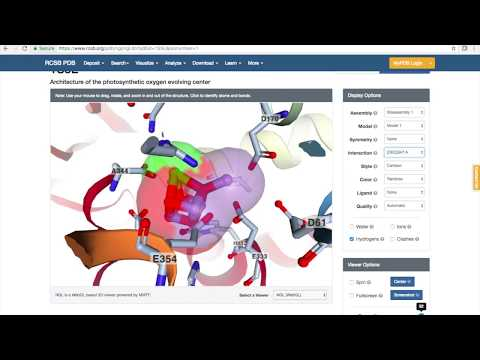 PDB Tutorial: A Basic How-To