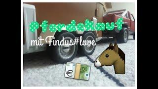 Lisa kauft ein neues Pferd//mit Findus#love