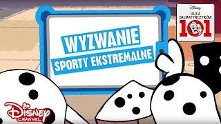 Zwierzęta kontra ludzie - Sporty ekstremalne! | Ulica Dalmatyńczyków 101 | Disney Channel Polska