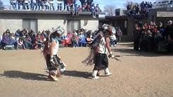 Hopi Buffalos @Hotevilla