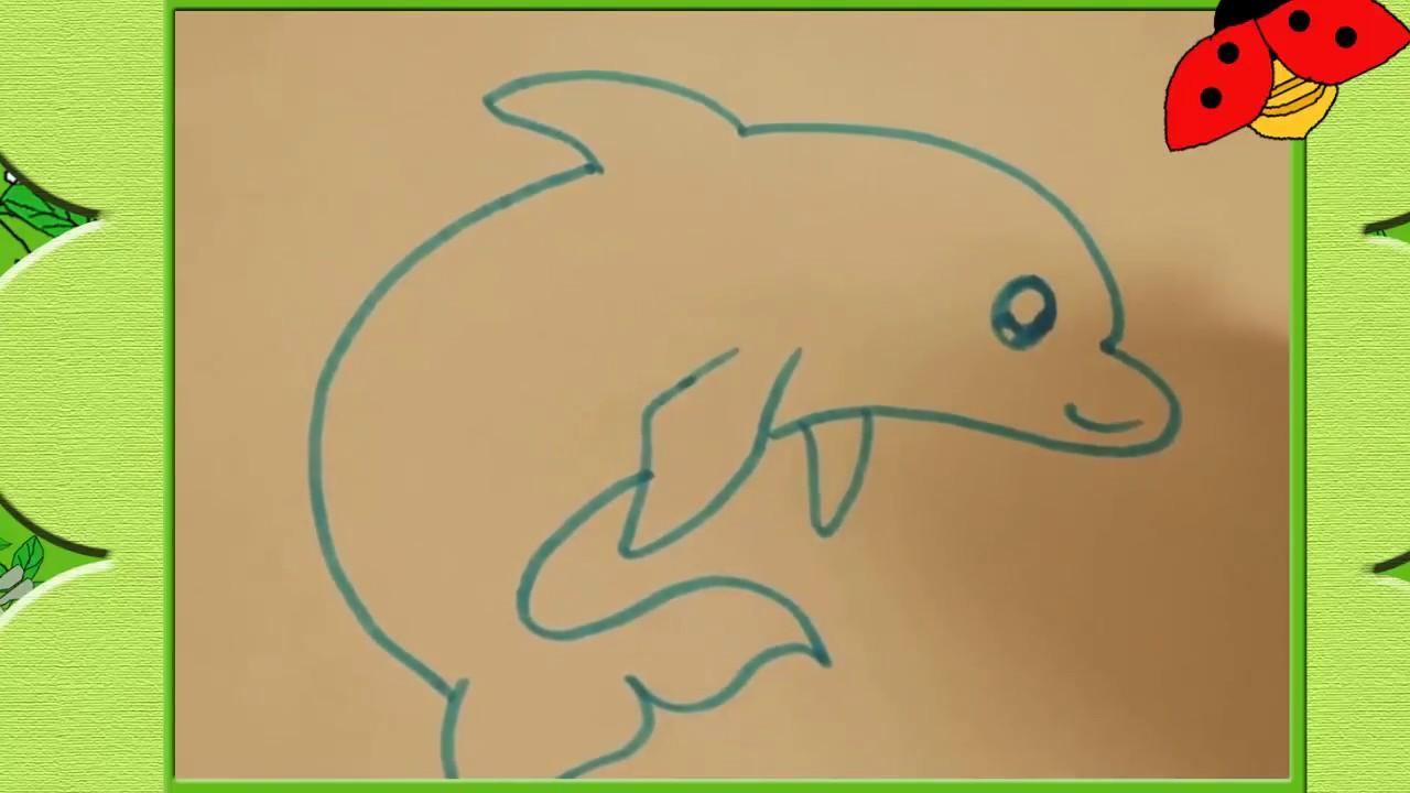bé tập vẽ cá heo đơn giản