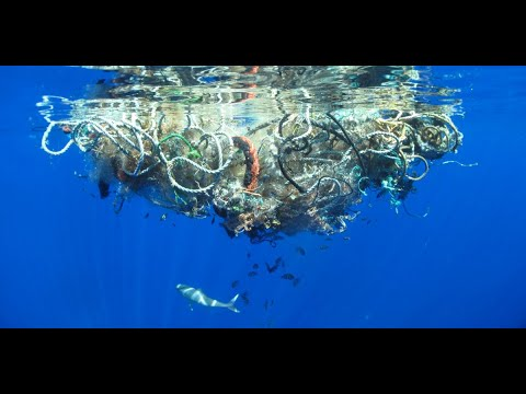 European Fishing Boats Dumping Waste On The Seychelles